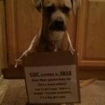 CGC Certified in 2015, \'cuz I\'z a big girl now.