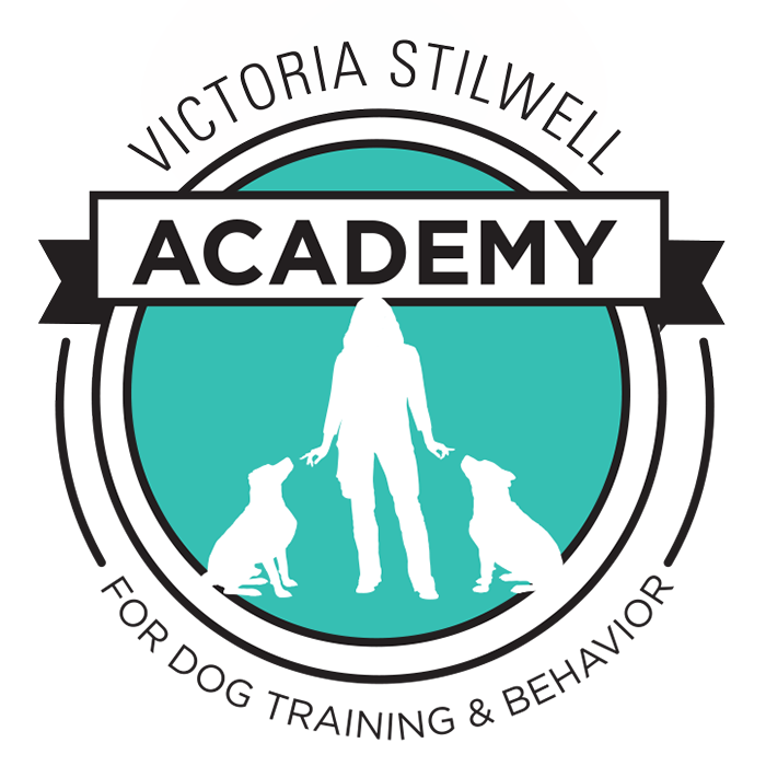 Victoria Stilwell Academy For Dog Training Behavior