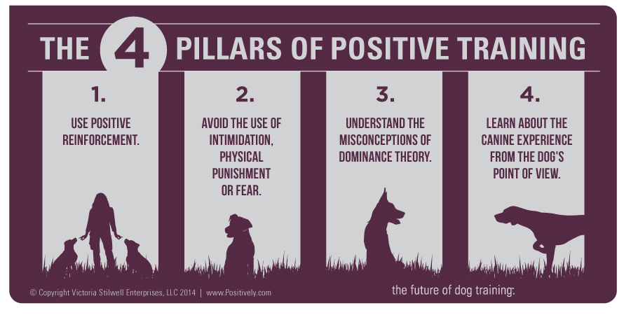 Victoria's Four Pillars of Positive Training: 1) The use of positive reinforcement. 2) Avoiding the use of intimidation, physical punishment or fear. 3) A comprehension of the often misunderstood concept of dominance. 4) A commitment to understanding the canine experience from the dog's point of view.