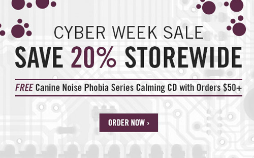 Positively Cyber Week Specials!