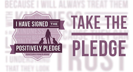 Sign the Positively Pledge