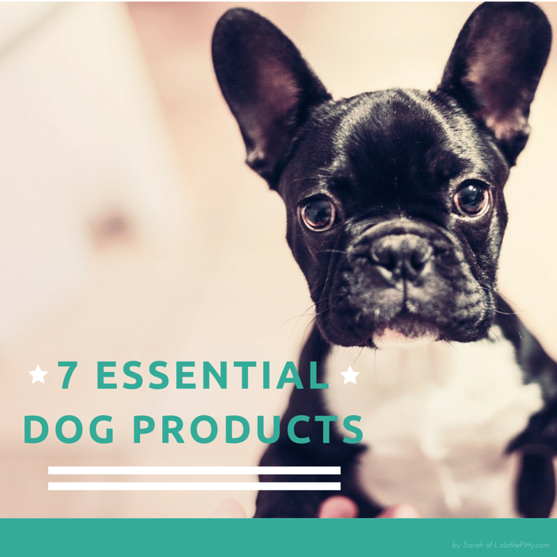 7 Must Have Dog Products
