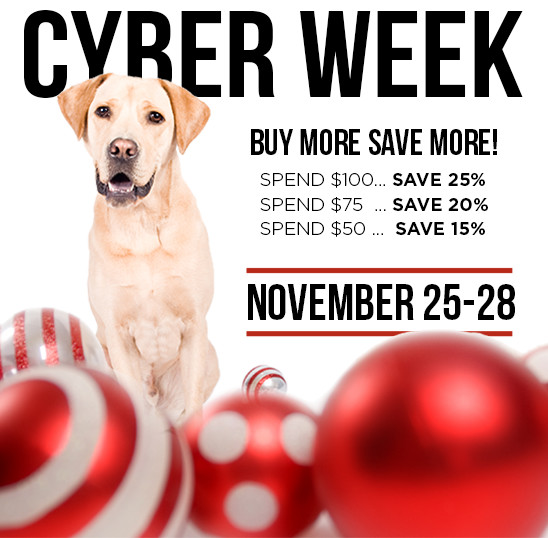 black_friday-cyberweek_2016