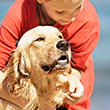 CHILD_DOG_SAFETY_110