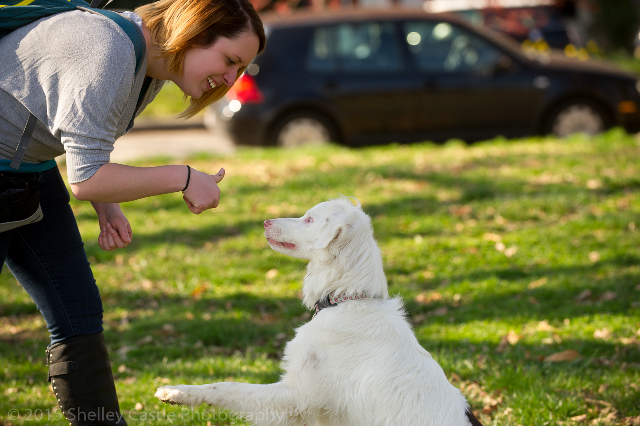Training A Deaf Dog Victoria Stilwell Positively