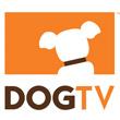 DOGTV_110