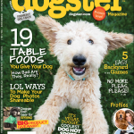 Dogster cover