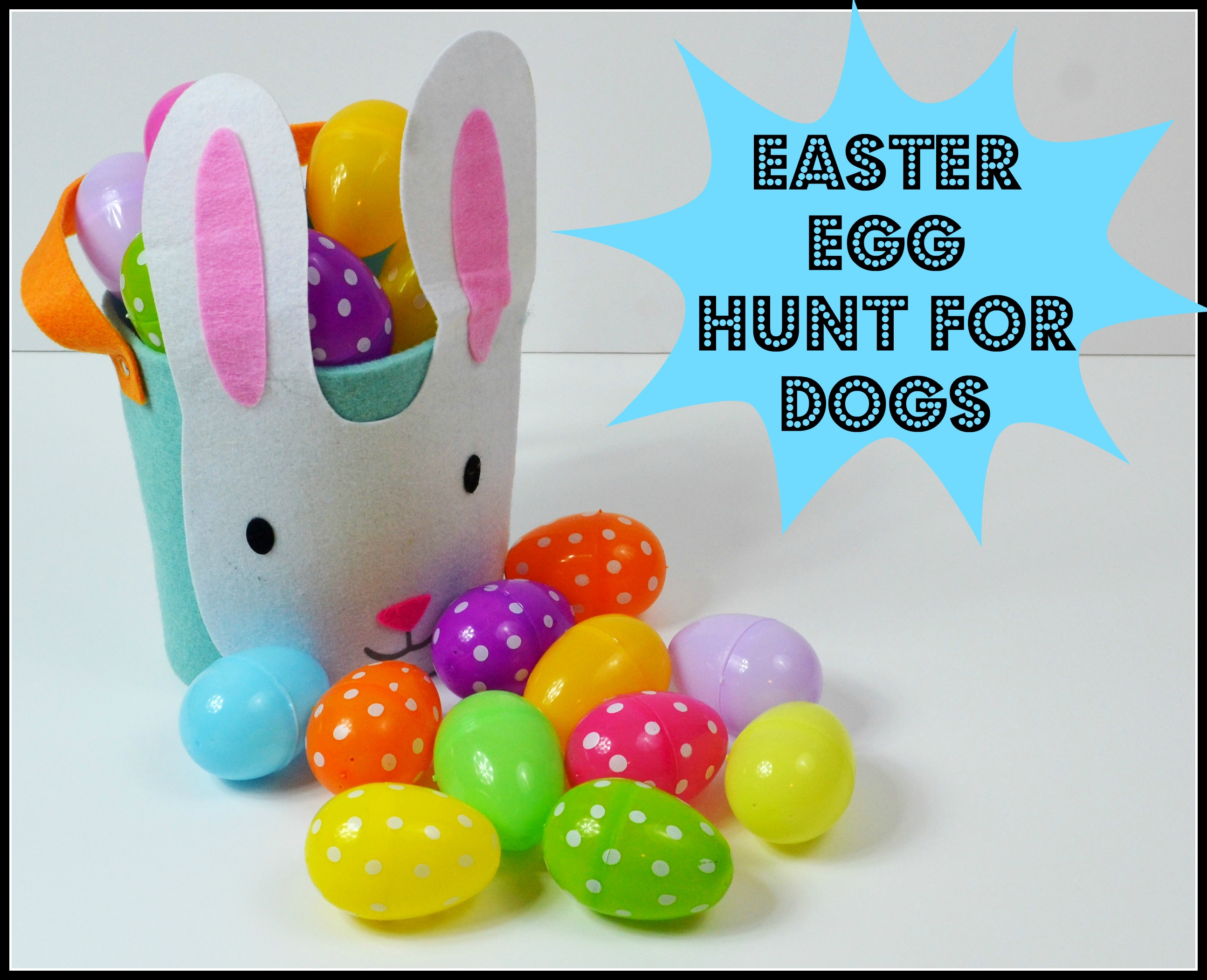How to make an easter egg hunt for your dog victoria stilwell throwing an easter egg hunt for dogs baskets negle Image collections