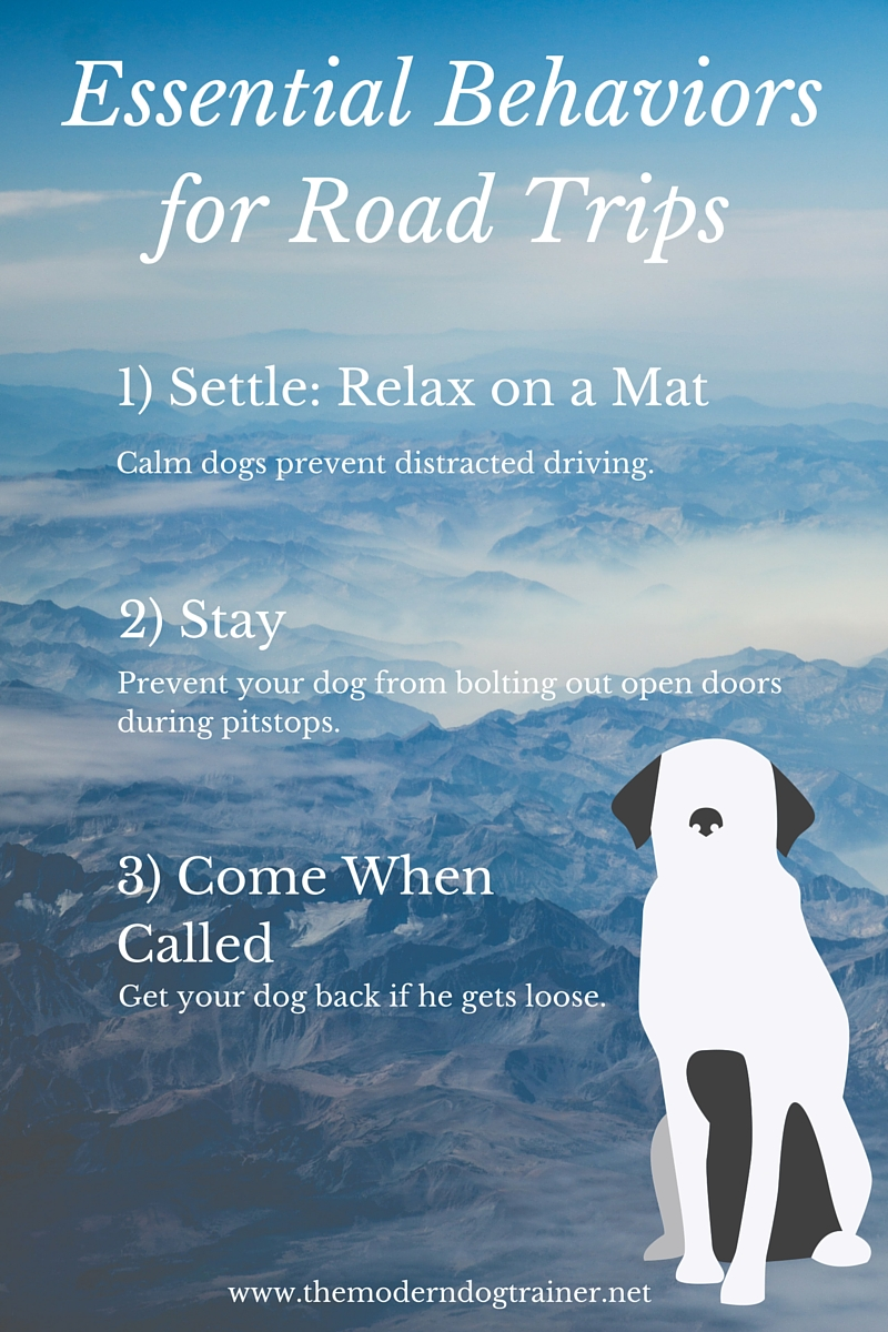 3 Behaviors Your Dog Should Know Before His First Road Trip