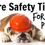 Fire Safety Tips for Pets