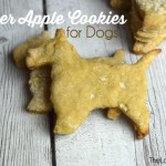 Ginger Apple Cookies for Dogs