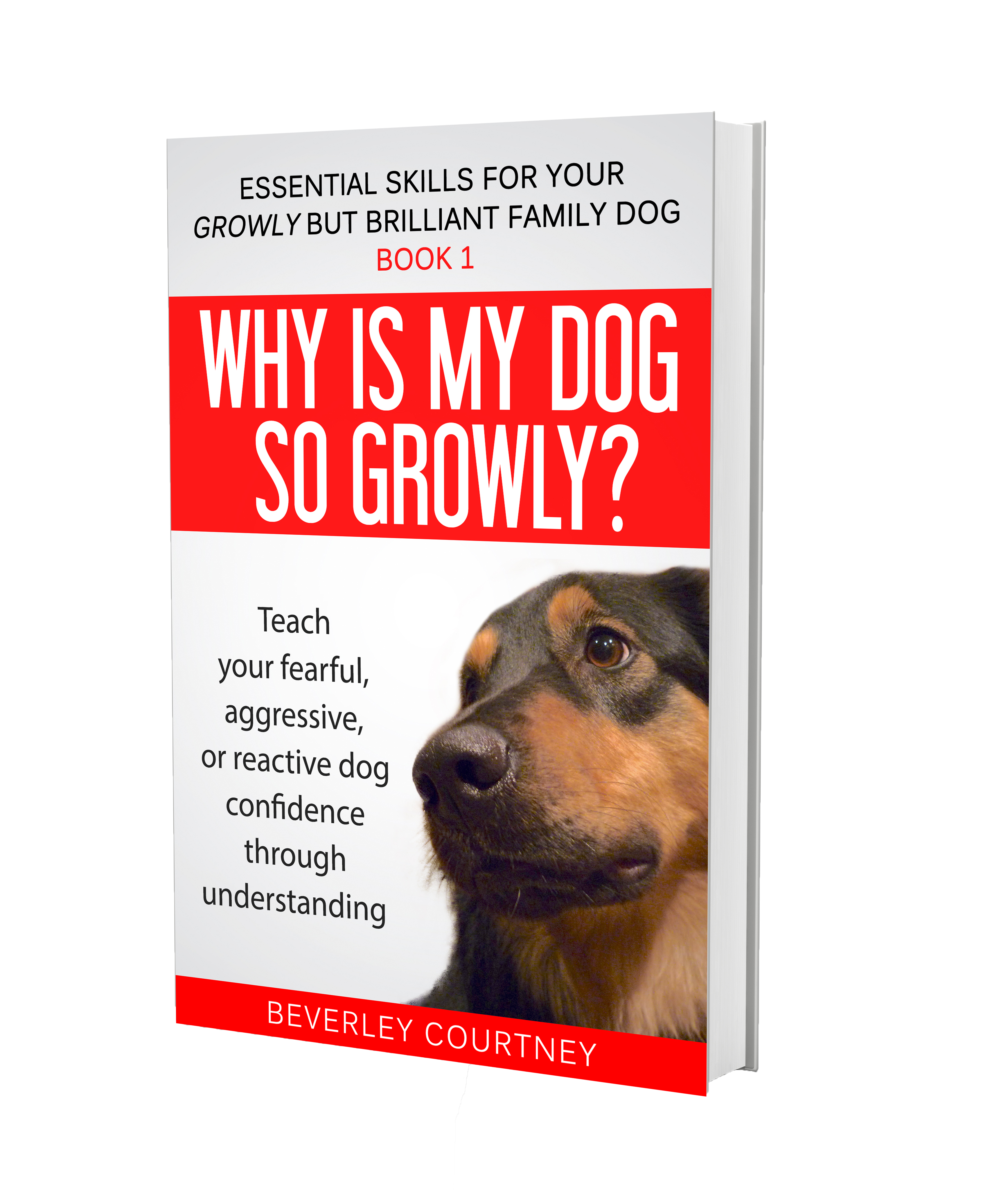 Help for Growly and reactive dogs