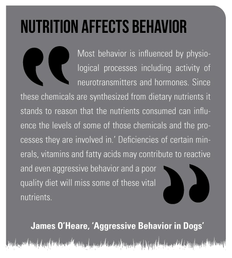 Most behavior is influenced by physiological processes including activity of neurotransmitters and hormones. Since these chemicals are synthesized from dietary nutrients it stands to reason that the nutrients consumed can influence the levels of some of those chemicals and the processes they are involved in. Deficiencies of certain minerals, vitamins and fatty acids may contribute to reactive and even aggressive behavior and a poor quality diet will miss some of these vital nutrients. (James O'Heare – Aggressive Behavior in Dogs)