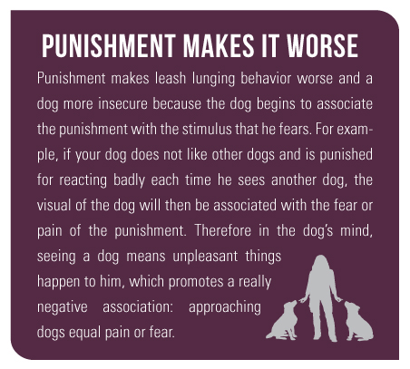 Punishment Makes It Worse Punishment makes leash lunging behavior worse and a dog more insecure because the dog begins to associate the punishment with the stimulus that he fears. For example, if your dog does not like other dogs and is punished for reacting badly each time he sees another dog, the visual of the dog will then be associated with the fear or pain of the punishment. Therefore in the dog's mind, seeing a dog means unpleasant things happen to him, which promotes a really negative association: approaching dogs equal pain or fear.