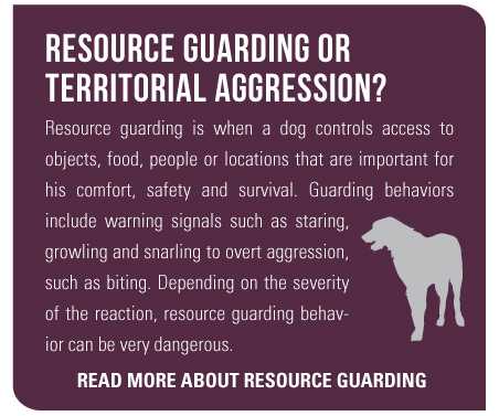 Resource Guarding or Territorial Aggression Resource Guarding is when a dog controls access to objects, food, people or locations that are important for his comfort, safety and survival. Guarding behaviors include warning signals such as staring, growling and snarling to overt aggression, such as biting. Depending on the severity of the reaction, resource guarding behavior can be very dangerous.
