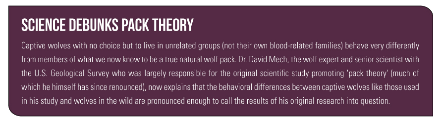 Science Debunks Pack Theory Captive wolves with no choice but to live in unrelated groups (not their own blood-related families) behave very differently from members of what we now know to be a true natural wolf pack. Dr. David Mech, the wolf expert and senior scientist with the U.S. Geological Survey who was largely responsible for the original scientific study promoting 'pack theory' (much of which he himself has since renounced), now explains that the behavioral differences between captive wolves like those used in his study and wolves in the wild are pronounced enough to call the results of his original research into question.