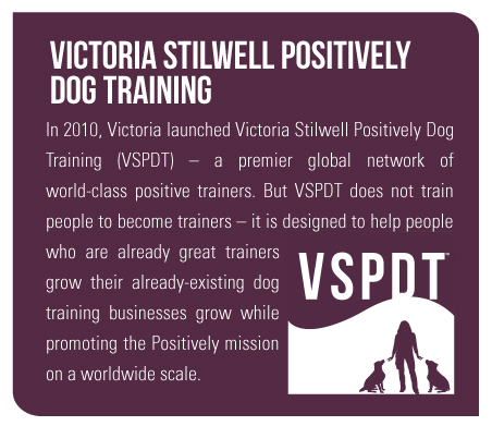 In 2010, Victoria launched Victoria Stilwell Positively Dog Training (VSPDT) – a premier global network of world-class positive trainers. But VSPDT does not train people to become trainers – it is designed to help people who are already great trainers grow their already-existing dog training businesses grow while promoting the Positively mission on a worldwide scale.
