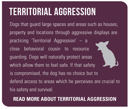 Territorial Aggression Dogs that guard large spaces and areas such as houses, property and locations through aggressive displays are practicing 'Territorial Aggression' – a close behavioral cousin to resource guarding. Dogs will naturally protect areas which allow them to feel safe. If that safety is compromised, the dog has no choice but to defend access to areas which he perceives are crucial to his safety and survival. Read more about territorial aggression here.