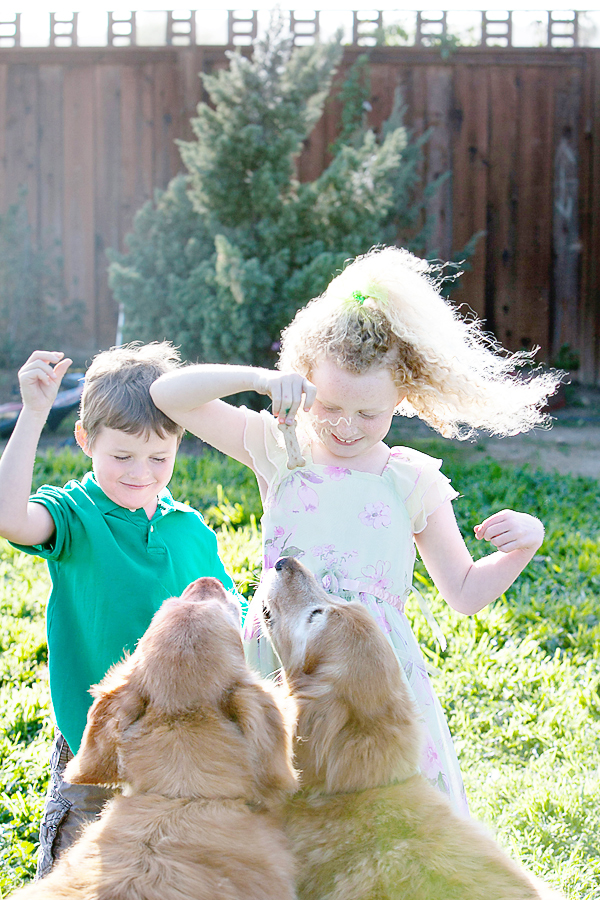 INTRODUCING_DOG_TO_KIDS_Featured