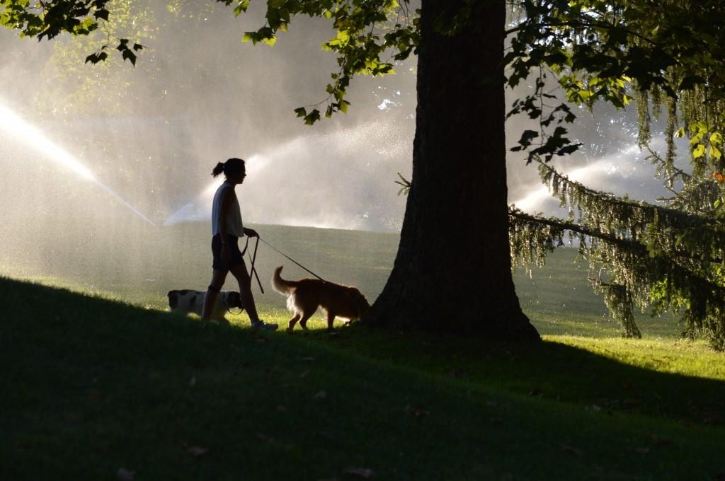 Linda Vinny Cooper Lake of Woods Park Sept 2013