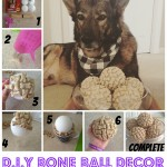 How To Become A Dog Trainer Collage