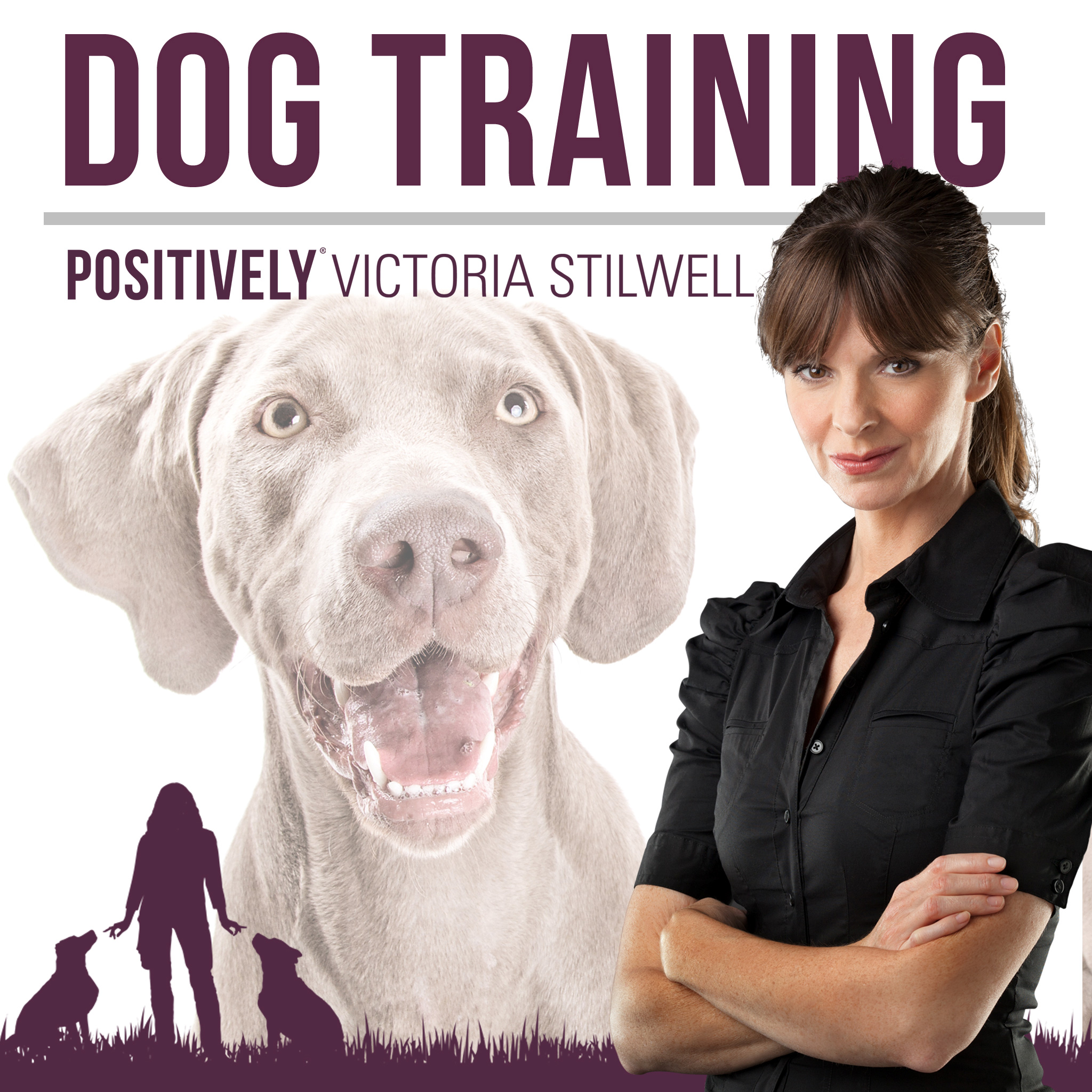 PositivelyDogTraining-Podcast-albumcover-v2-150331