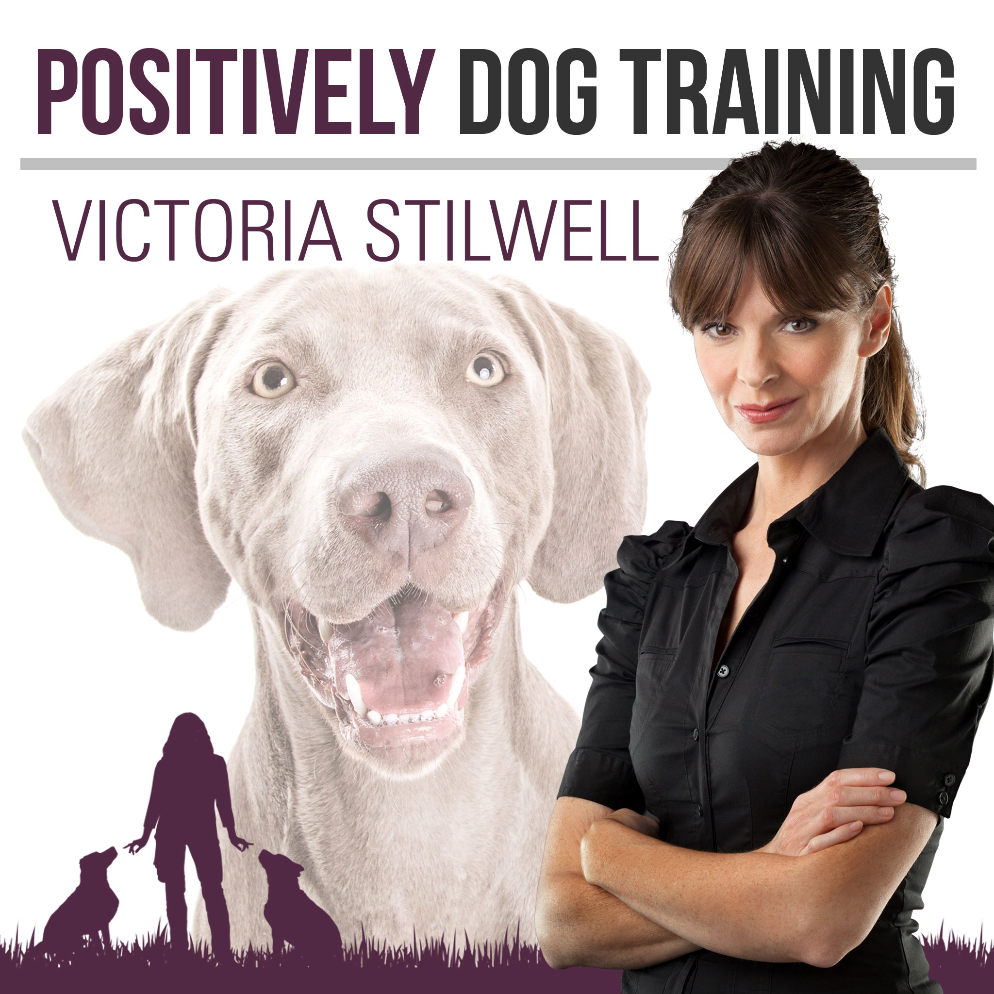 PositivelyDogTraining-Podcast-albumcover-v3-150408