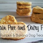 Pumpkin and Banana Dog Treats from TheLazyPitBull.com