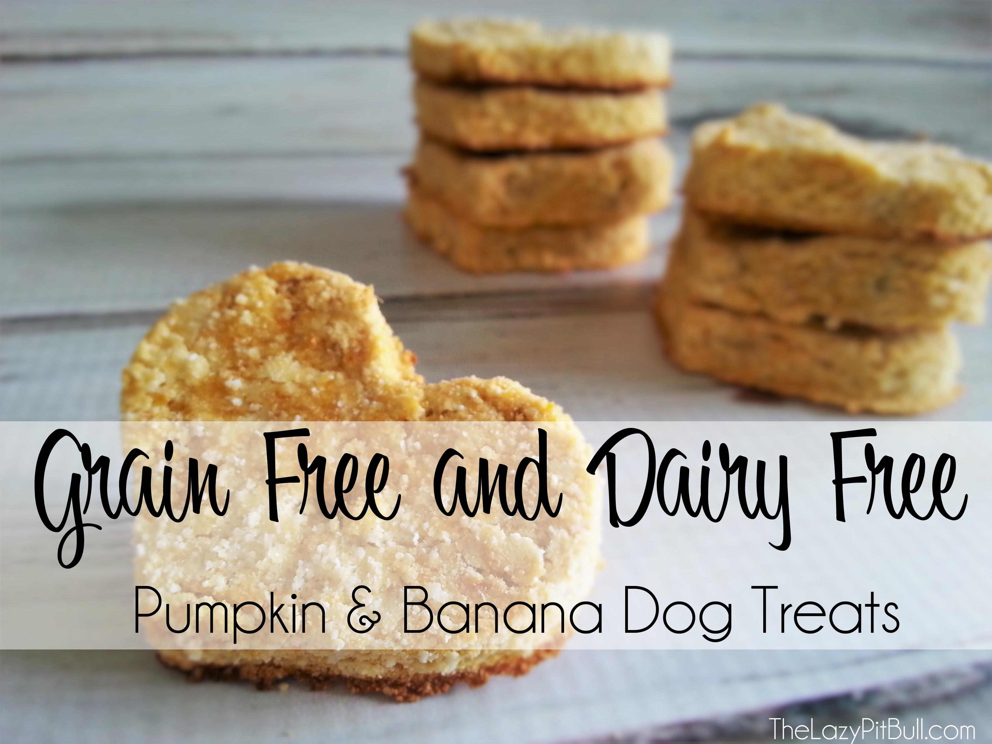 Pumpkin and Banana Dog Treats from TheLazyPitBull.com