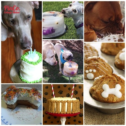 Out My DIY Dog Birthday Cake Pinterest Board Here For Some Fun Ideas