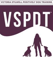 VSPDT_logo_web