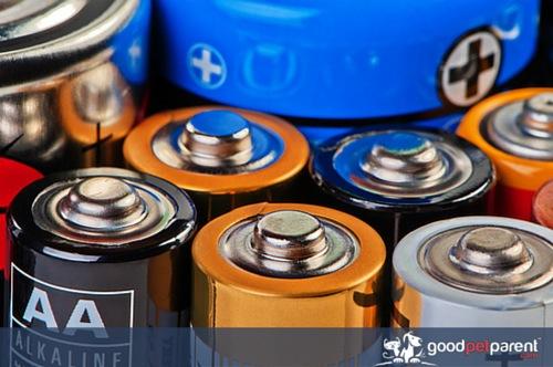 Alkaline Batteries Toxic To Pets Goodpetpa 1