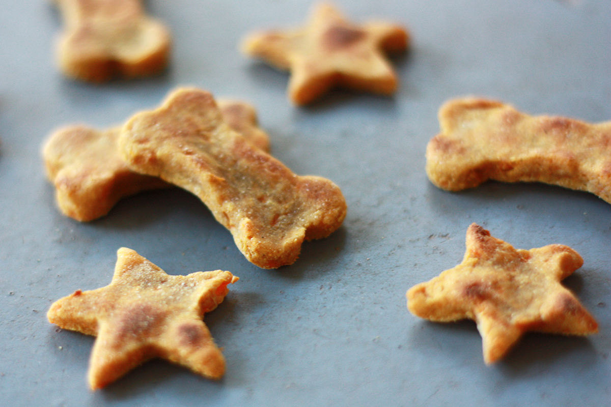 3 Ingredient Vegan Dog Treats, recipe from Good Dogs & Co.