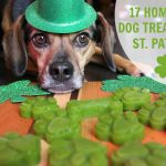 17 Homemade Dog Treats Perfect for St. Patrick's Day