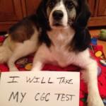 I will take my CGC test.