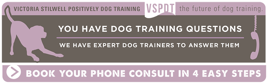 Talk to a certified positive dog trainer now!