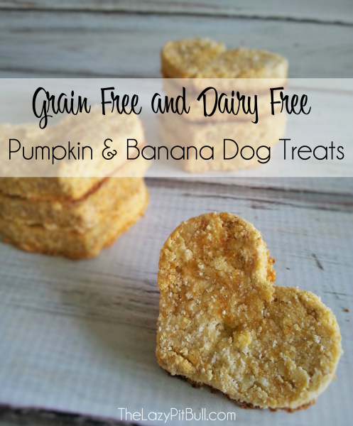 Pumpkin Banana Dog Treats Grain And Dairy Free Victoria