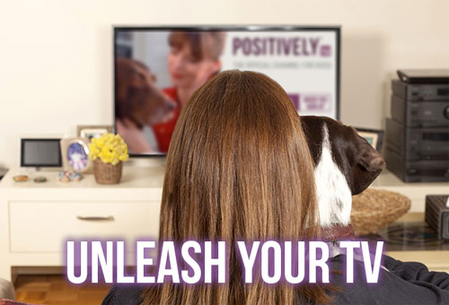 Unleash Your TV