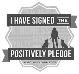 I Made The Positively Pledge